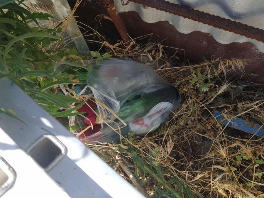 Ομάδα ΔΙΑΣ: Εντόπισε 18 βόμβες μολότοφ στην Νέα Φιλαδέλφεια